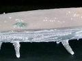 Boat, Porcelain, 52 x 9 x 13 cm, 2001